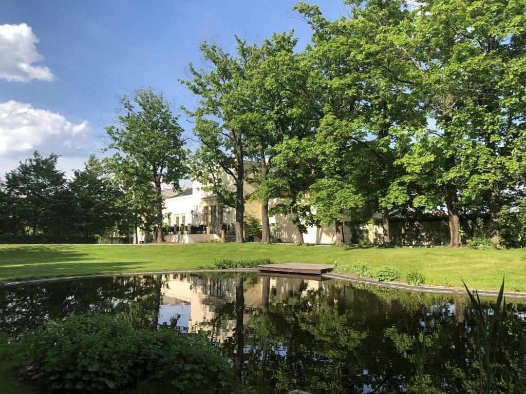 Jezírko v parku